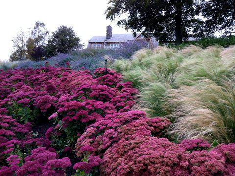 formality-garden-design-2