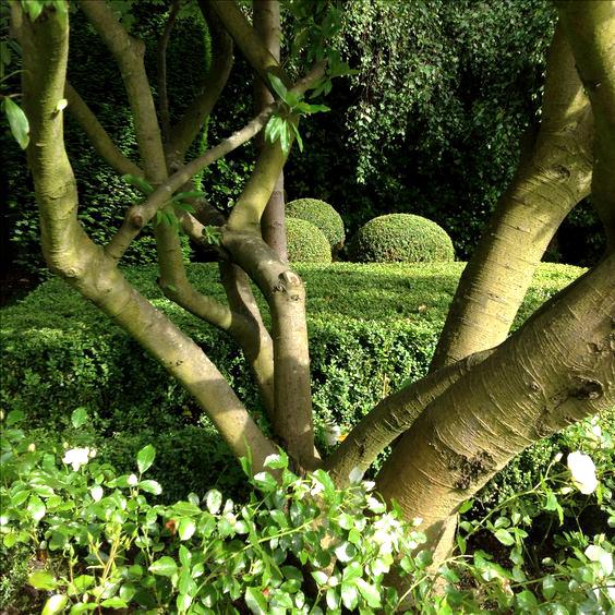 formality-garden-design-9