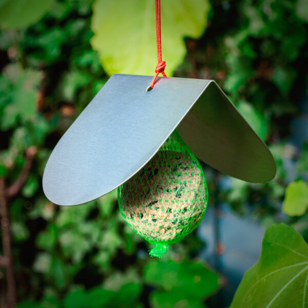 Bird Feeder with roof and fat ball