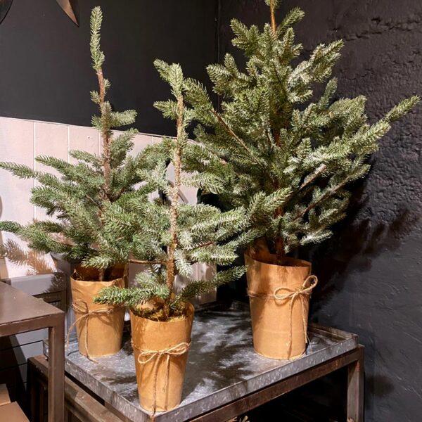 Decorative Spruce Tree