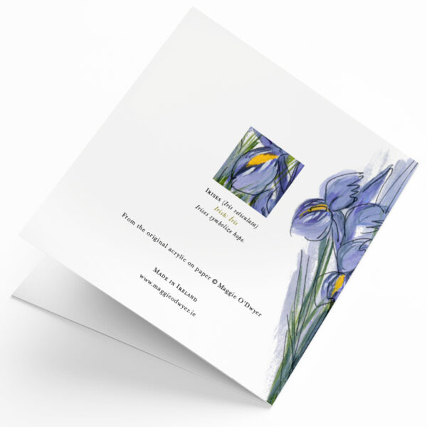 Maggie O'Dwyer Art Cards - Irises (Iris reticulate)