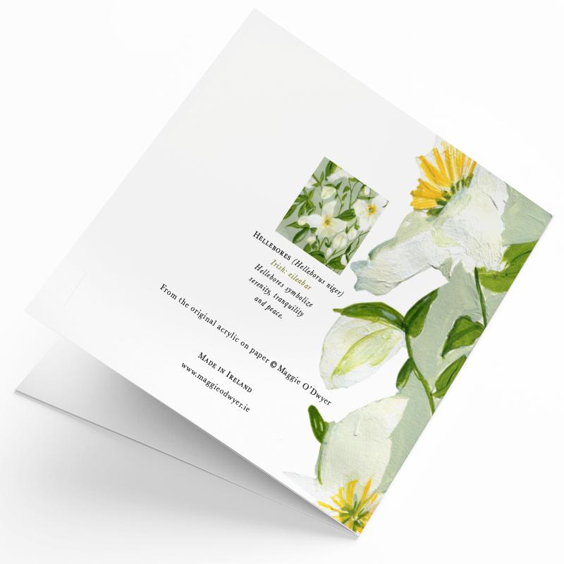 Maggie O'Dwyer Art Cards - Hellebores (Helleborus niger)